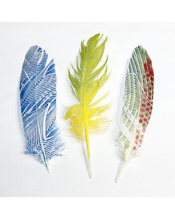 Feather - Printing Kit - Gelli Arts