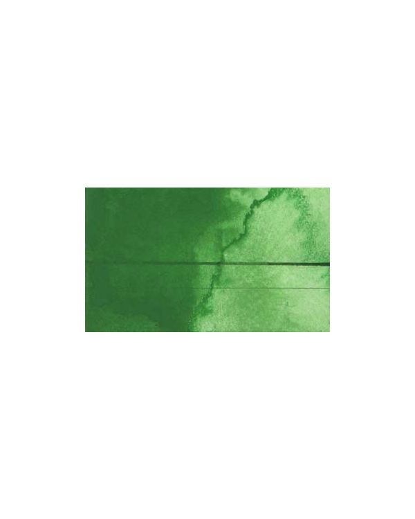 Permanent Green Light - QOR Watercolour 11ml - Golden