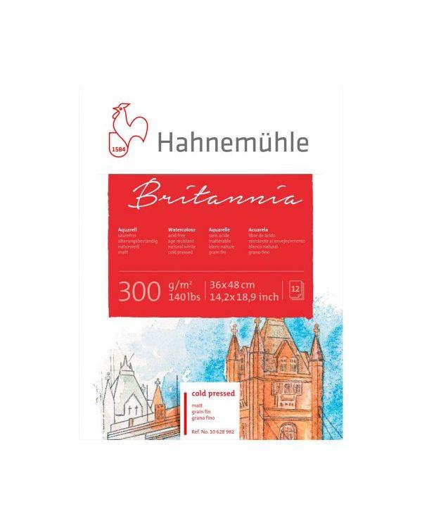 48 x 36cm - 300gsm - 12 sheets - Hahnemühle Britannia Watercolour Block