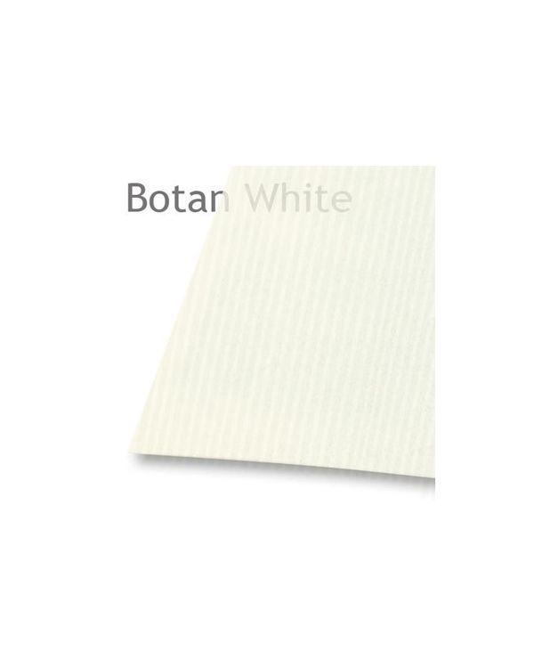 *Botan - 53gsm  - 109 x 78.8cm