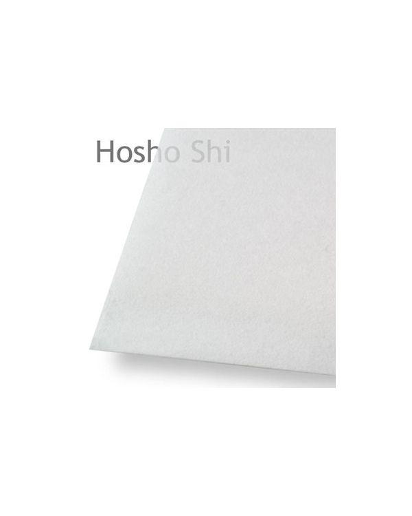 *Hosho Shi White Laid Handmade - 56gsm - 41 x 53cm