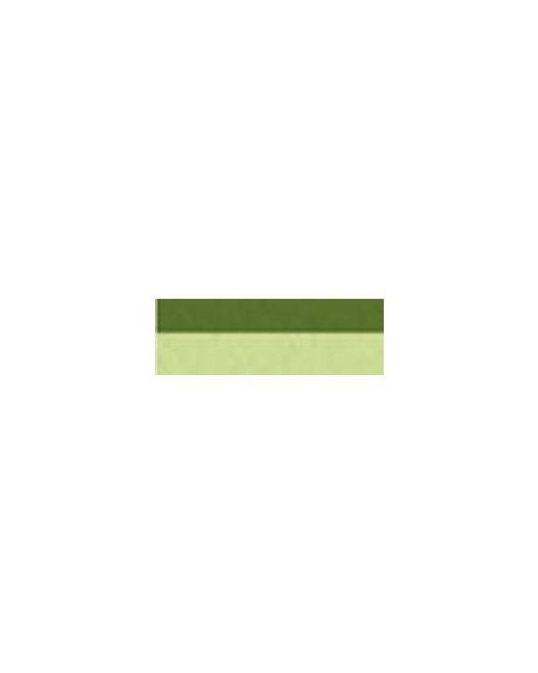Sap Green - 120ml - Sennelier Abstract Acrylic